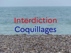 Interdiction de ramassage de coquillage