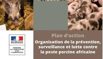 Plan d'action contre la peste porcine africaine (P.P.A)